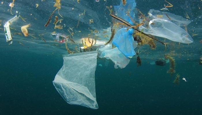 پلاسٹک کی آلودگی