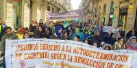 Pakistanis Hold Rally On Kashmir Solidarity Day In Barcelona
