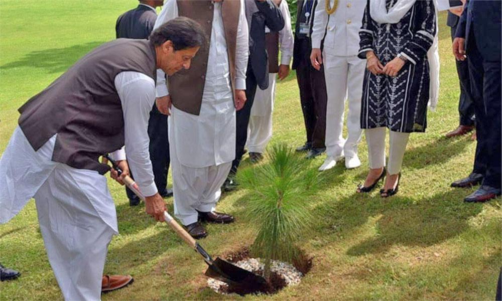وزیر اعظم آج لاہور میں شجر کاری مہم کا افتتاح کرینگے