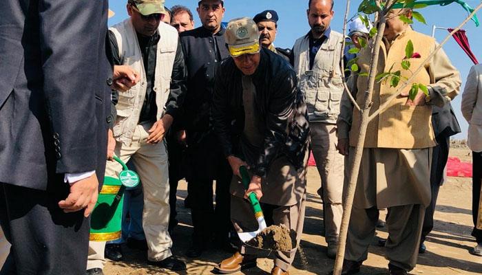 بلوکی میں شجر کاری مہم، وزیر اعظم نے پودا لگایا