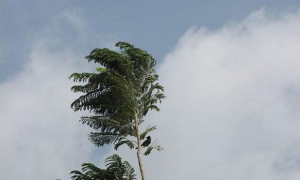 کراچی میں چلتی تیز ہواؤں میں اضافے کا امکان