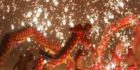 Dragon Dance In Splashing Molten Iron For New Year In China