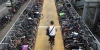 Netherlands People To Cycle To Work In Effort To Cut Road Congestion