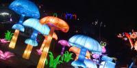 Kiev Hosts Lantern Show To Celebrate Chinese Lantern Festival