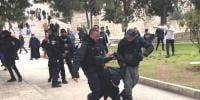 Israeli Forces Arrest 5 Palestinians