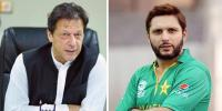 Shahid Afrifid Backs Pm Imran Khan