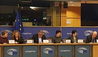 Sub Committee Of European Parliament Discussed Kashmir Issue After 11 Years