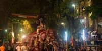 Glittering Elephants Parade Through Sri Lanka Streets In Annual Festival