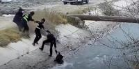Police Form Human Ladder To Rescue Boy From River In China