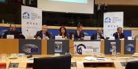 Conference On Promotion Of Professional Education In Pakistan In Brussels
