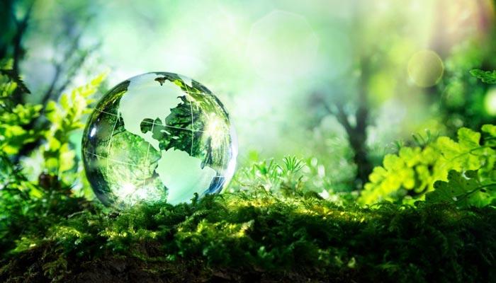 ماحولیات کو نصاب کا حصہ بنایا جائے، زرتاج گل