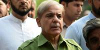 Nab Challenges Shahbaz Sharifs Bail In Ashiana Housing Case