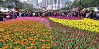 Annual Hong Kong Flower Show 2019