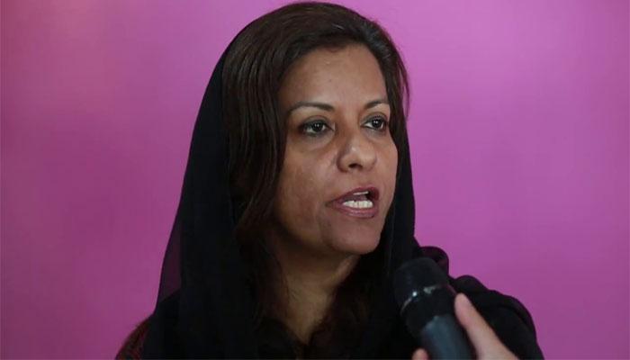 'فواد چوہدری کٹھ پتلی حکومت گوئبلز ہیں'