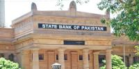 State Bank Of Pakistan 2nd Quarter Report On Domestic Economy