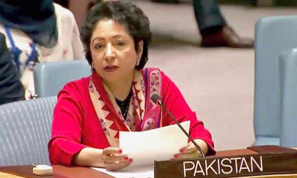 ''عالمی برادری کشمیر میں جاری ریاستی دہشتگردی پر بھی توجہ دے''