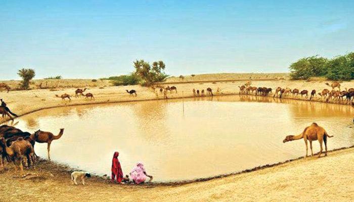 دنیا کا حسین ترین صحرا ''تھر پارکر''