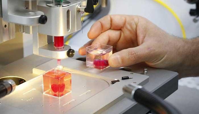 انسانی ریشوں اور شریانوں کےساتھ پہلا 3Dپرنٹ دل تیار