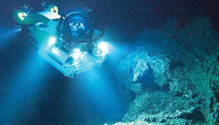 سمندر میں تیل کے اجزا کھانے والے بیکٹیریا دریافت