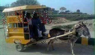 Donkey Chingchi Rickshaw In Lahore