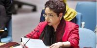 Maleeha Lodhi Addresses In Un General Assembly
