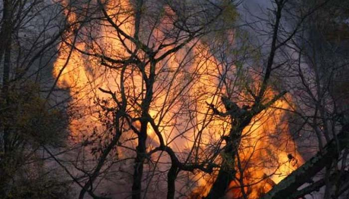 بہاولپور :ذخیرہ جنگل میں آگ بھڑک اٹھی، ہزاروں درخت جل گئے