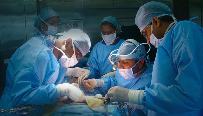 امریکا میں 3 بندروں کی ہارٹ سرجری