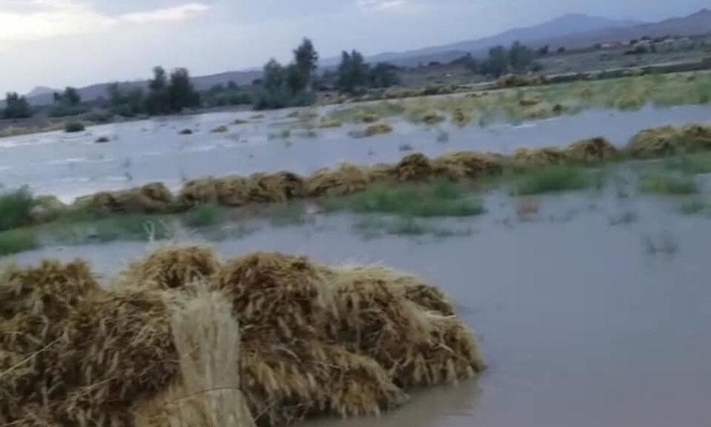 بلوچستان میں بارشوں سے 3 افراد جاں بحق، طغیانی سے شاہراہیں بند