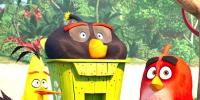 New Trailer Of Animated Movie The Angry Birds 2