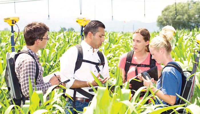 زراعت کی دنیا میں نئی پیش رفت