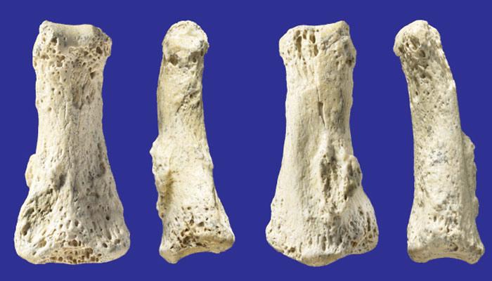 افریقا کے قدیم انسانوں کے راز