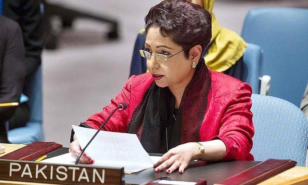 پاکستان کا 6 نکاتی لائحہ عمل اقوام متحدہ میں پیش