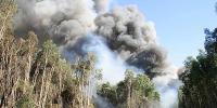 Fire In Florida Everglades Still Burning In Broward County