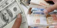 Dollar Exceed To 161 Rupee In Open Market