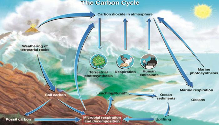 کاربن ڈائی آکسائیڈ کا تعاقب