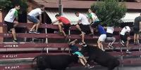 Bull Runner Gets Completely Taken Out By Animal During Spanish Festival