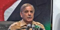 Shahbaz Sharif Condemns Arrest Of Pmln Workers