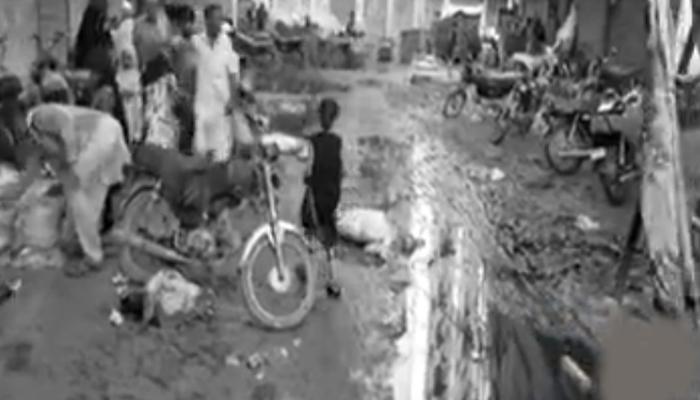 کراچی میں کانگو وائرس کے کیسز میں اضافہ