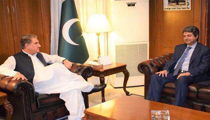 مسئلہ کشمیر: شاہ محمود کی فروغ نسیم سے مشاورت