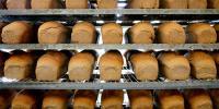Sindh Food Authority Raid Anad Seal Bread Factory In Karachi