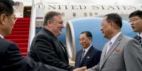 North Korea Foreign Minister Calls Pompeo Poisonous Plant
