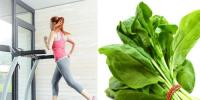 A Cup Of Spinach A Day Can Make You Lose Weight Quickly Know How And Other Health Benefits
