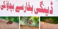 Dengue Prevention Meeting Decease Dr Invited As Guest