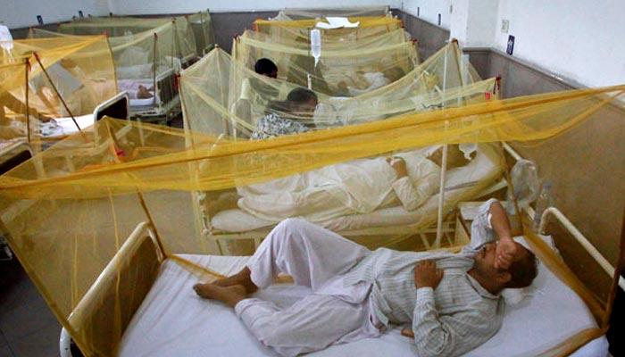 کراچی سمیت سندھ میں ڈینگی مچھر کی یلغار
