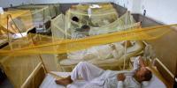 Dengue Fever Affects 1900 People In Karachi