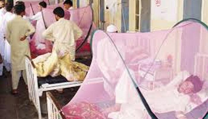 پشاور ہائی کورٹ کی ڈینگی مریضوں کیلئے وارڈ مختص کرنے کی ہدایت