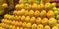 Pakistan Mango Exports Achieve Record Target