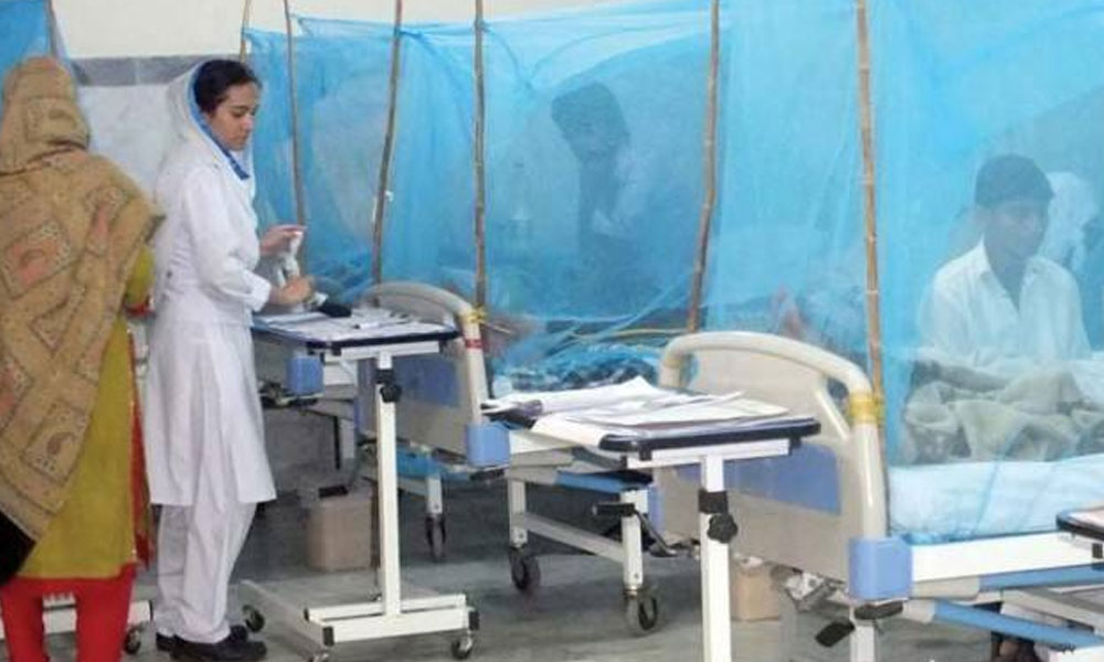 پنجاب، ڈینگی کے مریضوں کی تعداد میں مسلسل اضافہ