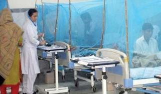 Dengue Situation In Punjab