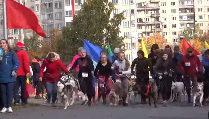 روس میں مالکان کی اپنے کتوں کے ہمراہ دلچسپ ریس کا انعقاد